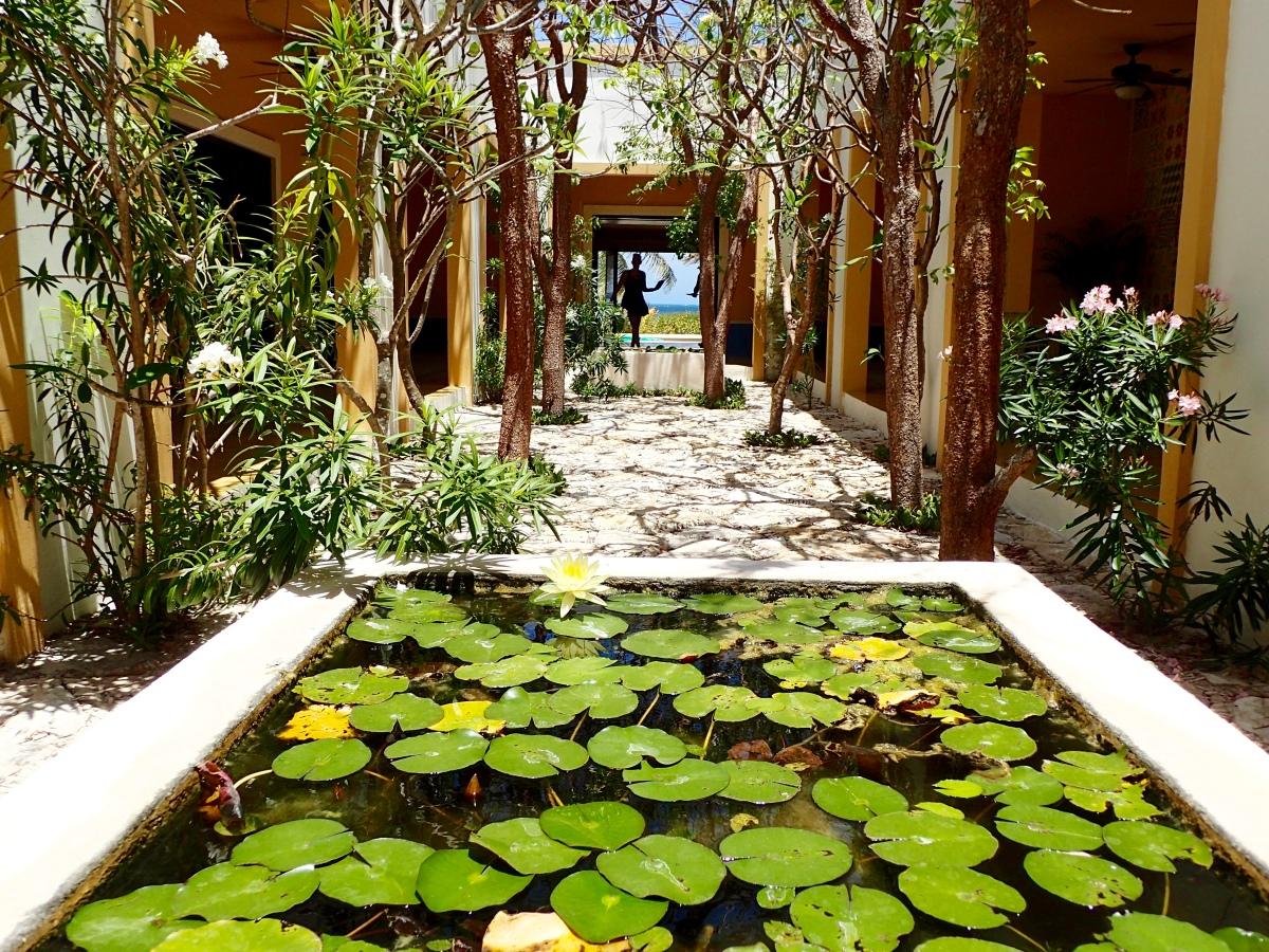 Mais où est Telchac Puerto... Tout près du paradis... Mérida (Mexique)
